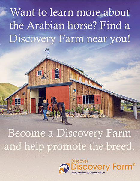 Sherman Ranch Arabian AHA Discovery Farm