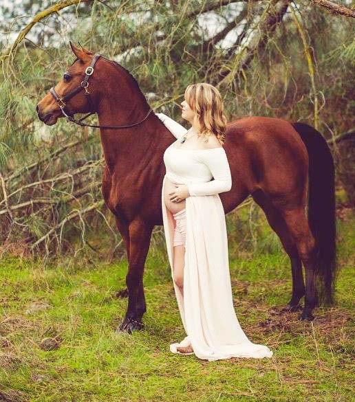 Just Serendipity Arabian mare